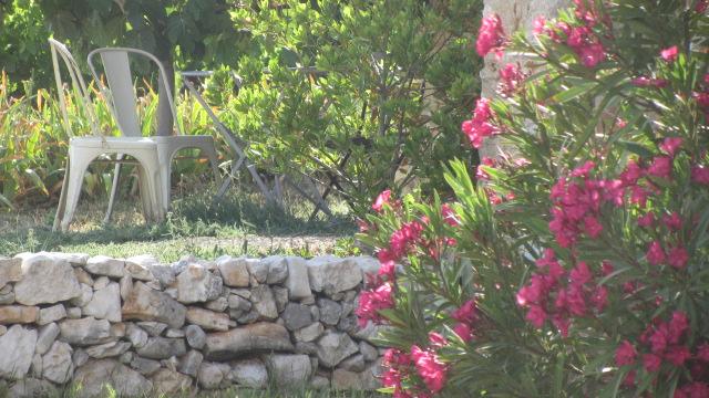 jardin coloré